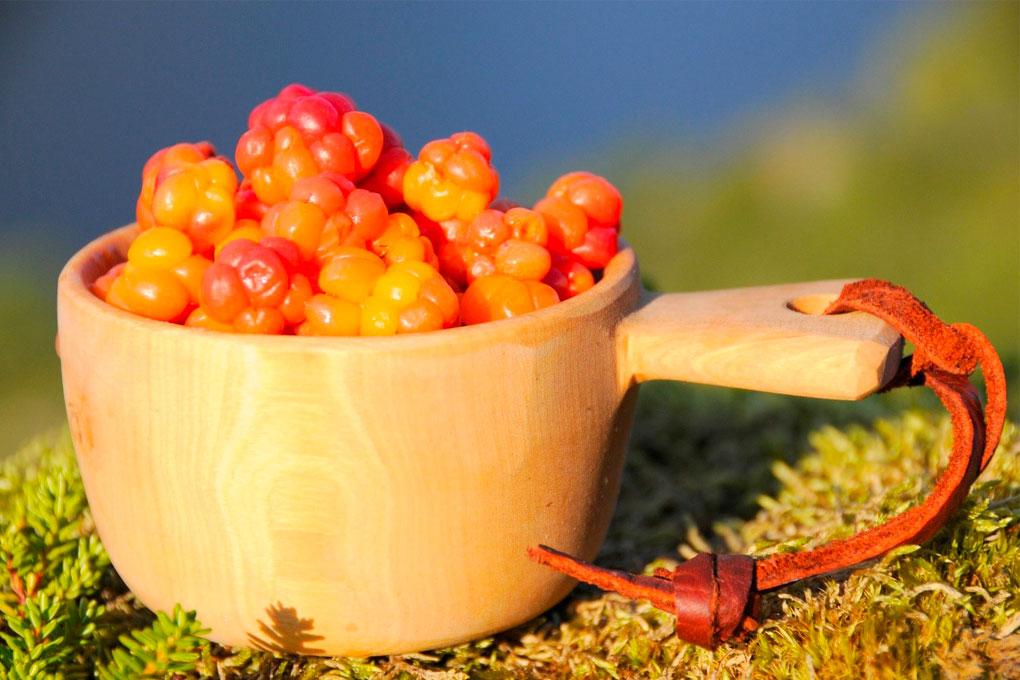 En kopp med multebær