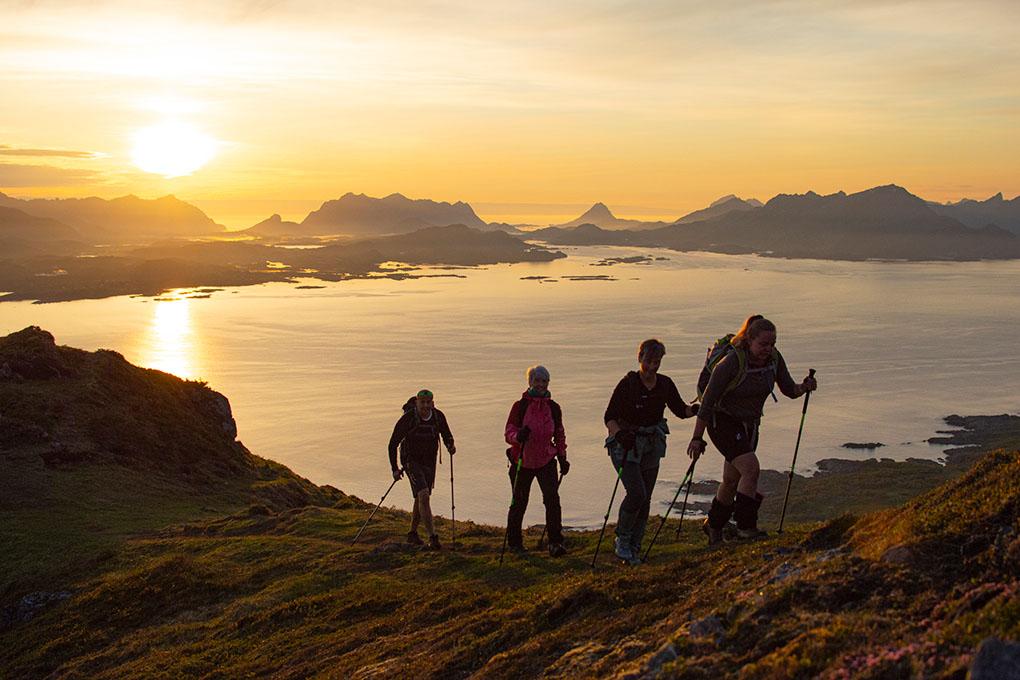 Midnight sun guidet tour to Finnsæterkollen on Hadsel island